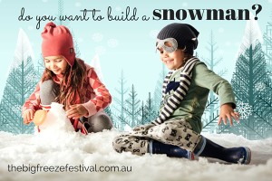 The Big Freeze Festival