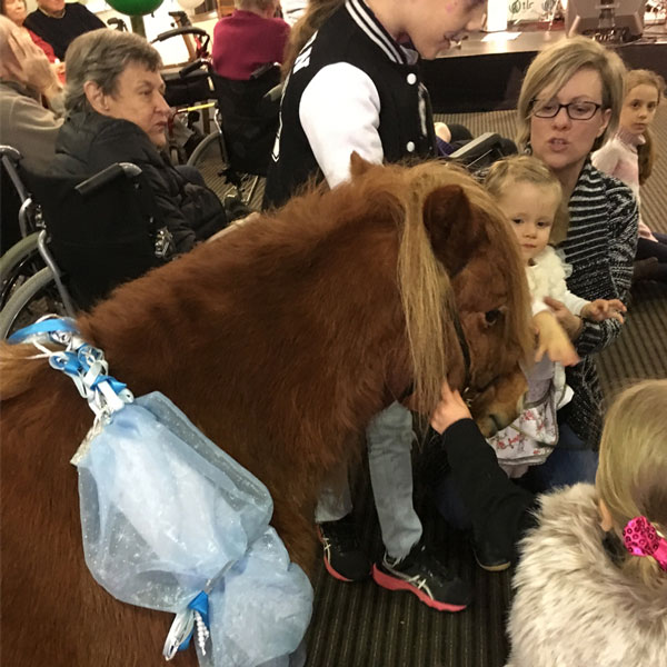 Therapy Pony Visits