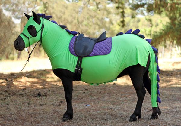 Dinosaur Pony Costume