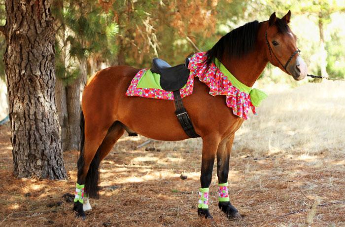 Melbourne Pony Parties