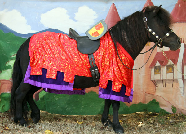 Medieval Knights Horse