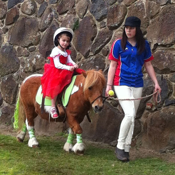 Pony Rides for Events