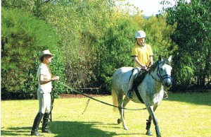 Lunging a pony