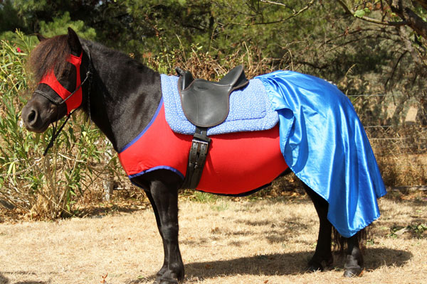 Super Pony to the rescue