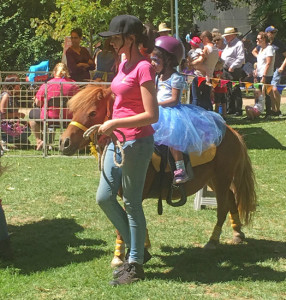 Pony Rides at Teddy Bears Picnic